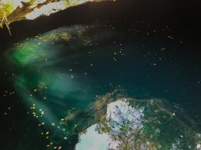 58 cenote calaveras tulum