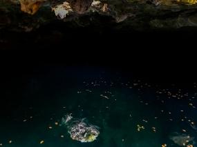 59 cenote calaveras tulum