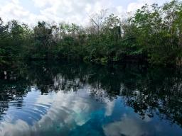 64 cenote carwash tulum