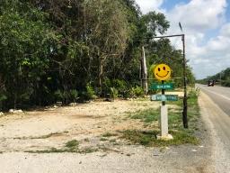 65 selva latina tulum