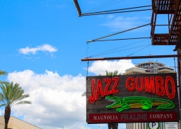 08 jazz gumbo canal street new orleans