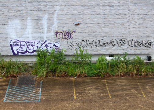 12 times-picayune building tags