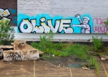 14 times-picayune building olive tag