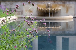 11 philadelphia rodin museum flowers & fountain
