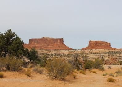 24 canyonlands utah