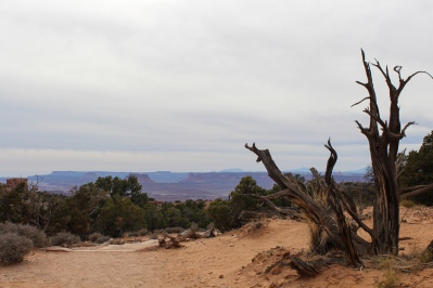 41 canyonlands utah