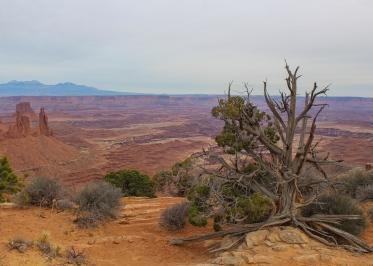 42 canyonlands utah