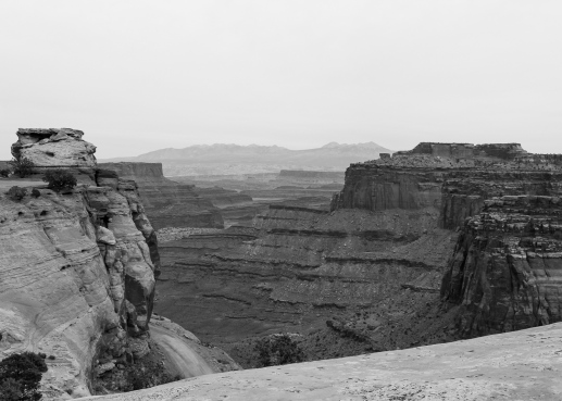56 canyonlands utah b&w
