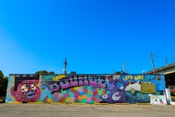 12 boss status bounce mural new orleans
