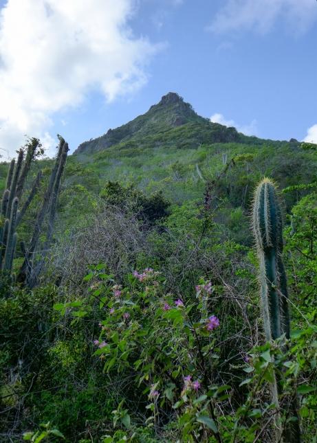 03 curaçao christofell mountain hike