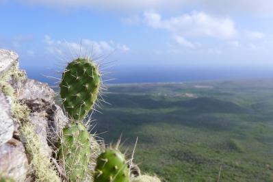16 curaçao christofell mountain hike