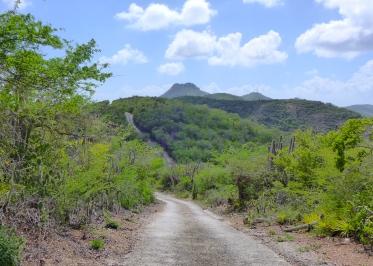 17 curaçao christofell mountain hike