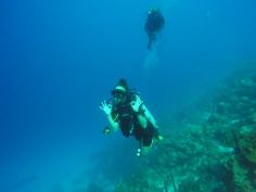 33 ang diving in curaçao