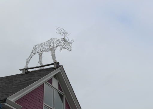 01 moose on building