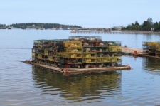10 new brunswick bay of fundy lobster traps