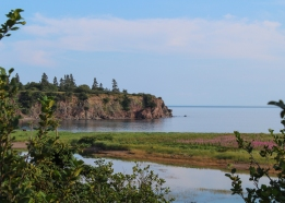 20 bay of fundy view