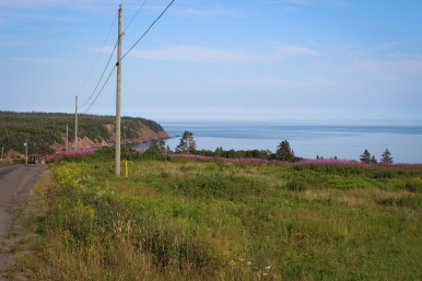22 bay of fundy view