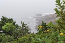 24 acadia national park