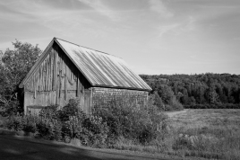 25 nova scotia barn b&w