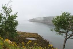 27 acadia national park