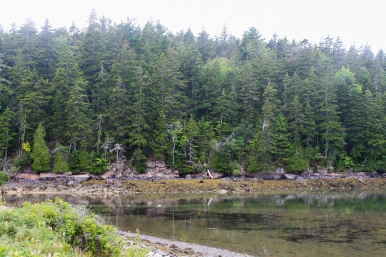 30 acadia national park