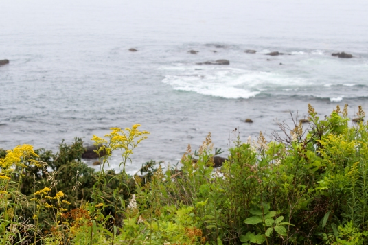 31 acadia national park