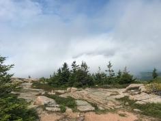 32 acadia national park