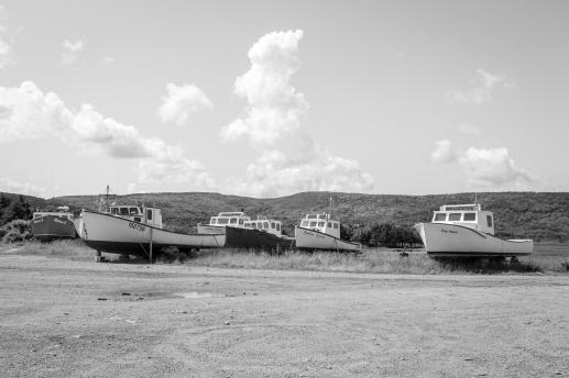 20 bay st. lawrence boats cabot trail cape breton nova scotia