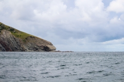 31 oshan whale watching cabot trail cape breton nova scotia