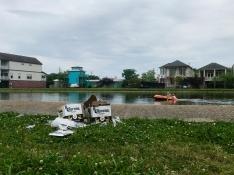 quarantine week 3 - 54 corona on the bayou