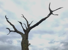 quarantine week 3 - 55 bayou music tree