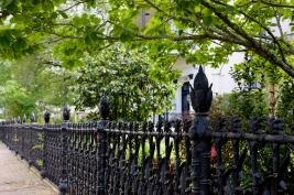 quarantine week 4 - 55 garden district cornstalk fence