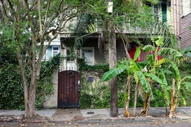 quarantine week 4 - 76 garden district house