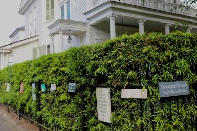 quarantine week 4 - 77 garden district dog signs