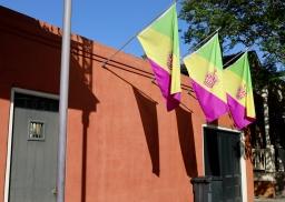 quarantine week 5 - 2 mardi gras flags