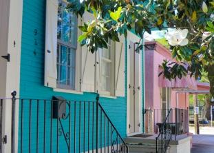 10 marigny houses + magnolia