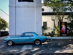 27 treme mustang st augustine church